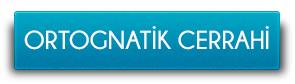 ortognatikcerrahi